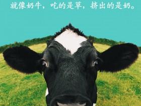 创意是什么?就像奶牛,吃的是草,挤出的是奶